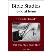 book-bible-studies-to-do-at-home-david-sims